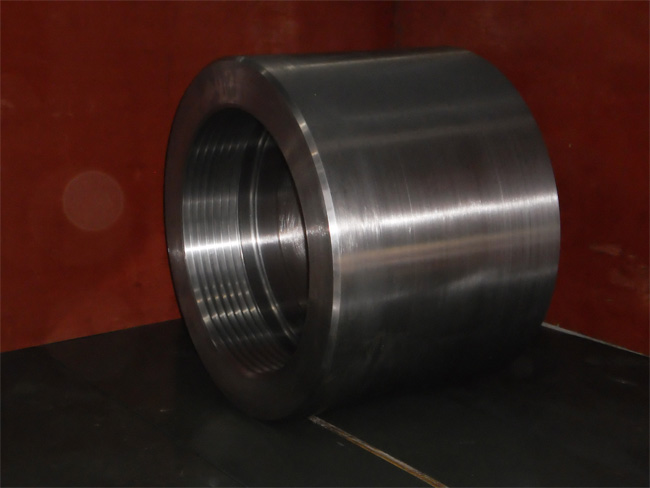 turbine sealing ring